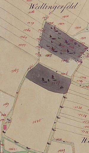 Schoeppling zwischen Zelli und Niederwoedling